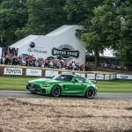 Mercedes AMG GT-R, Goodwood